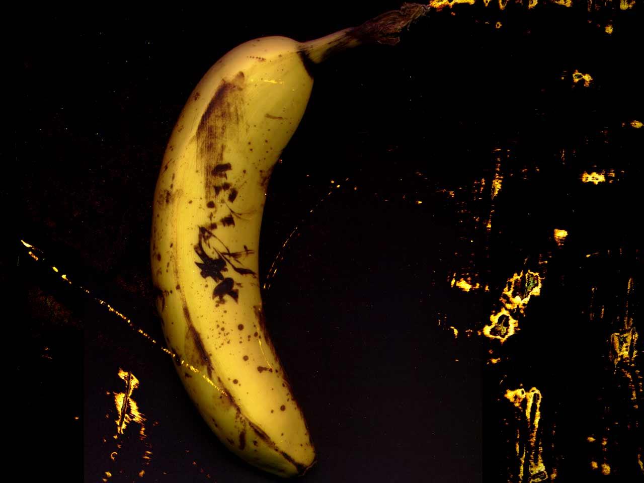 Toyota Land Cruiser Hd Wallpaper صور موز خلفيات فاكهة الموز Hd ميكساتك