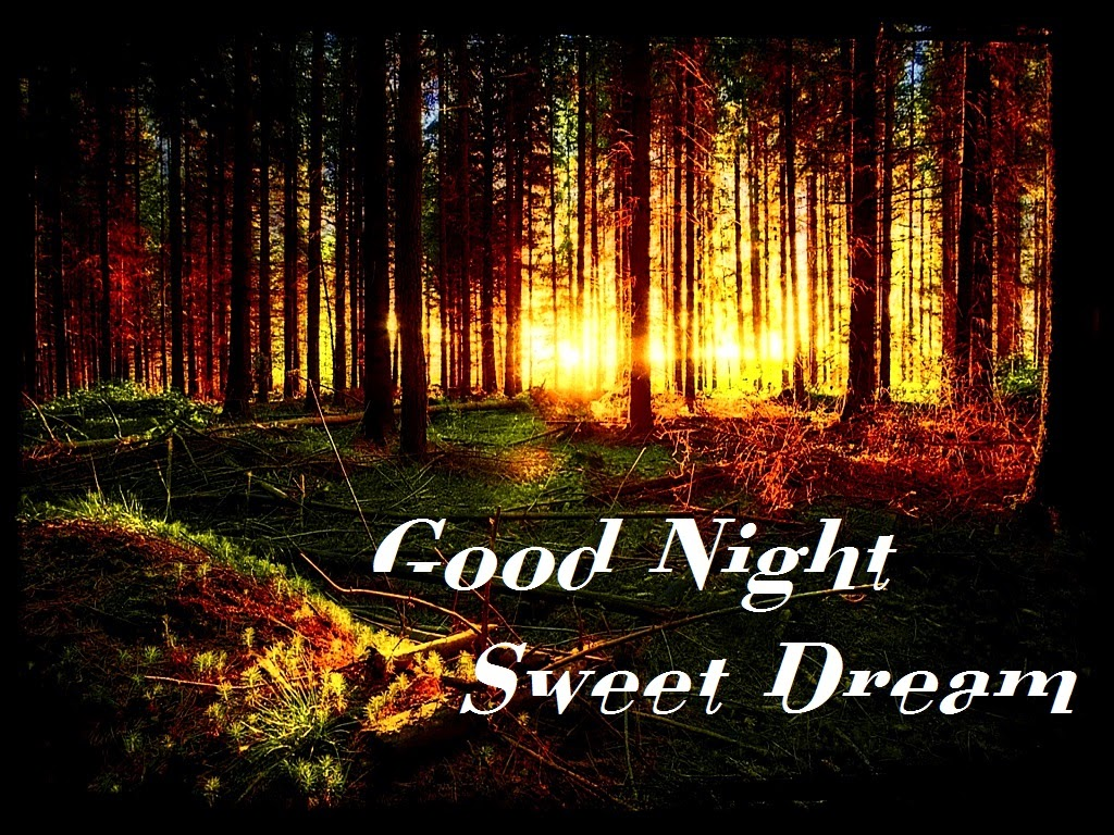 Wonderful Quotes Wallpaper Free Download صور مساء الخير صور مكتوب عليها Good Night ميكساتك
