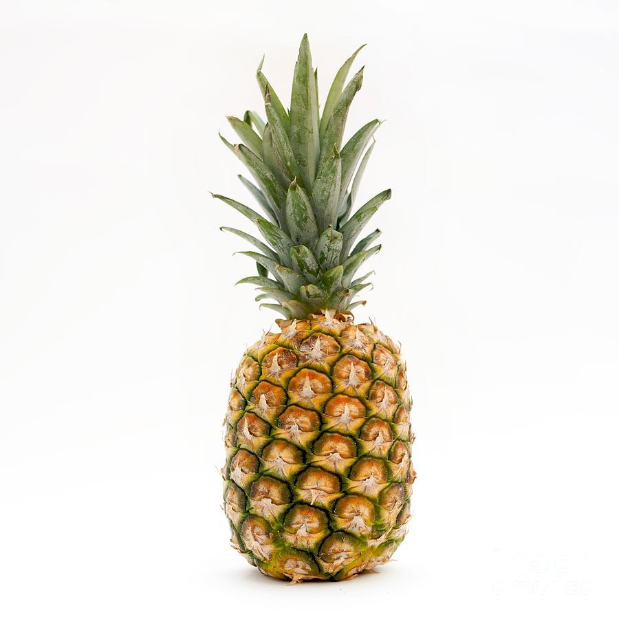 Cute Wallpapers Of Pineapples صور اناناس رمزيات وخلفيات فاكهة الانانس Hd ميكساتك