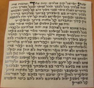 Mezuzah 12 cm Beis Yosef written by Rabbi Wallas $85 T.