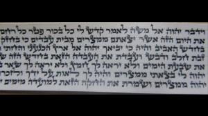 Sfaradi Tefillin Parshios Written By Rabbi Faviad T.