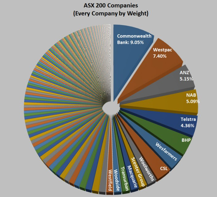 Every ASX 200 company by weight