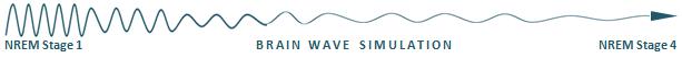 Brain Wave Simulation