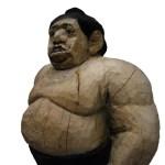 sumoringer