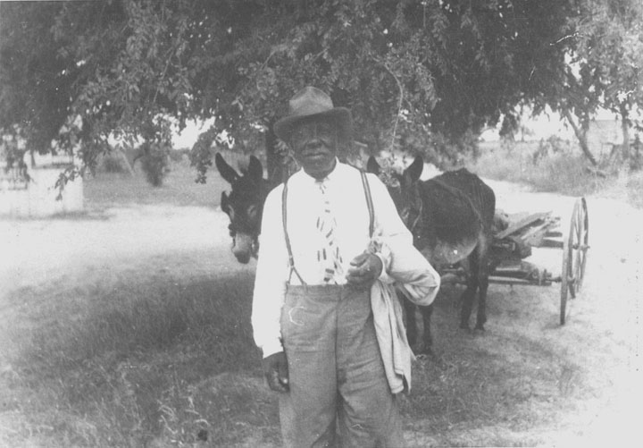 Washington Phillips sold honey from his mule cart in 1950, around when this photo was taken. He died in 1954 at age 74.