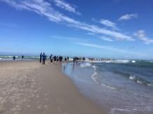 Midlife Sentence   Denmark The Baltic Sea