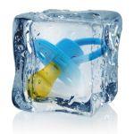 Congelacion ovulos