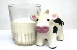 Leche vaca