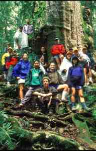 With one of my University of California classes in the Border Ranges rainforest.