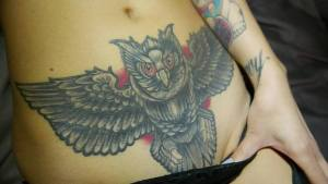 Cover Up Owl