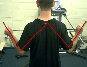 Shoulder W Exercise