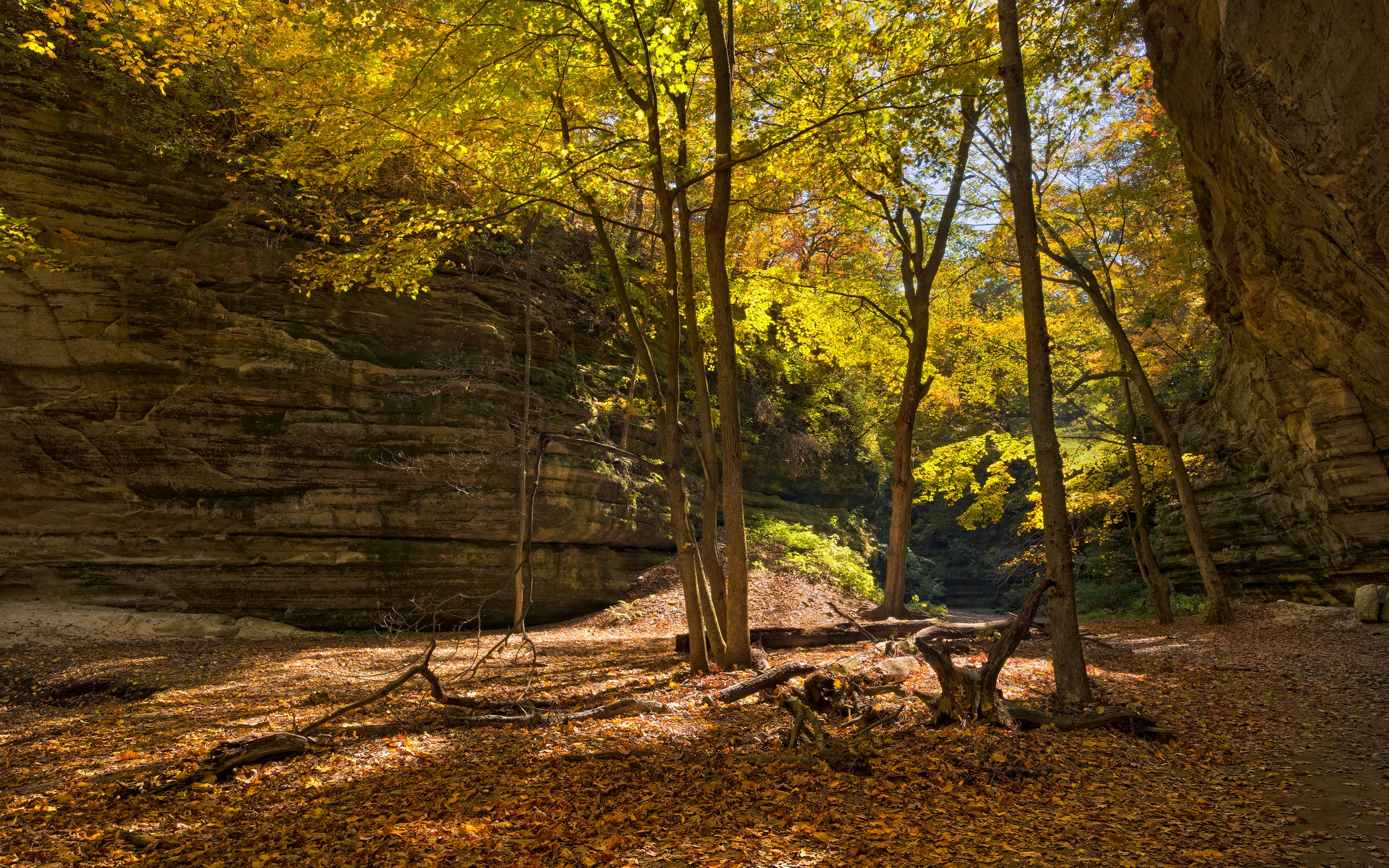 French Fall Wallpaper Fall Colors French Canyon Starved Rock State Park