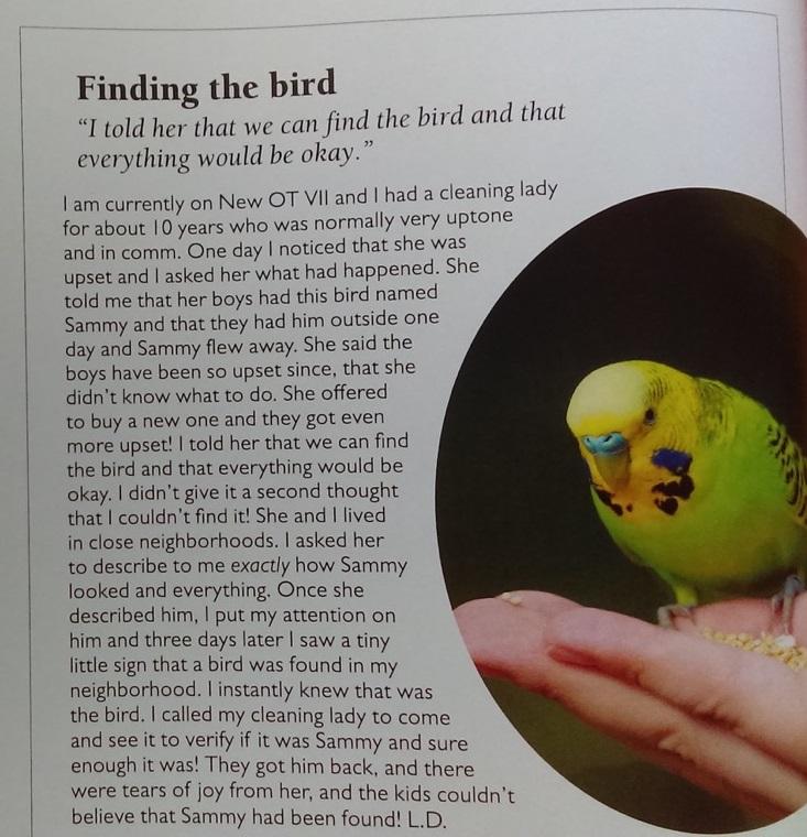 SAVE THE BIRD