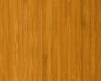 Bamboo Floors: Richmond Bamboo Flooring