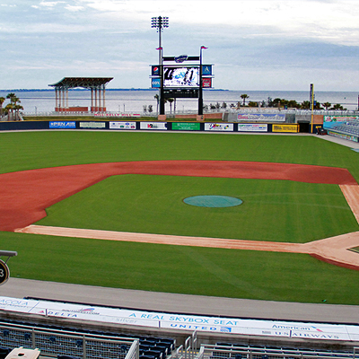 Best Seat in the House MiLB Fans The Official Site of Minor