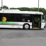 Transportation Options to and around Disney property for Shades of Green Guests