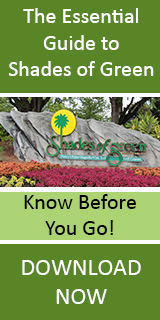 The Essential Guide to Shades of Green at Walt Disney World