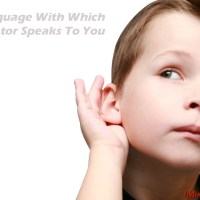 Hello - The Language With Which The Creator Speaks To You