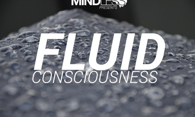 Could Water Be Fluid Consciousness?