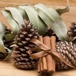 Uradite sami: Kako da vam kuća miriše na praznike