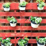 6 kreativnih načina da iskoristite drvene palete u dvorištu