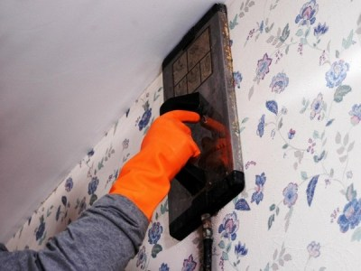 Wallpaper steamer – the easy way to remove old wallpapers