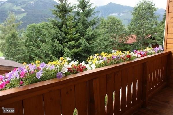 Idée déco  aménager un petit jardin dans son appartement balcon