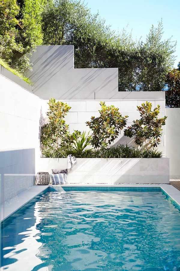 Backyard pool small plunge pool design ideas landscaping ideas pool