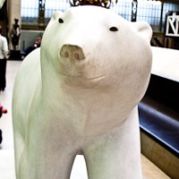 Big White bear... Coke anyone?