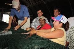 Se firma un convenio para el desarrollo de pulpos en Yucatán