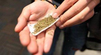 Aumento sin prevención, combate a las drogas sin sentido y razón