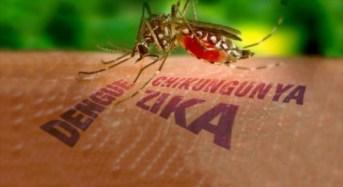 Diferencia y similitud dengue, chikungunya y zika: Dr. Leticia Yañez