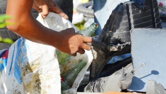 Se recolectan en Mérida 265 toneladas de potenciales criaderos de mosco