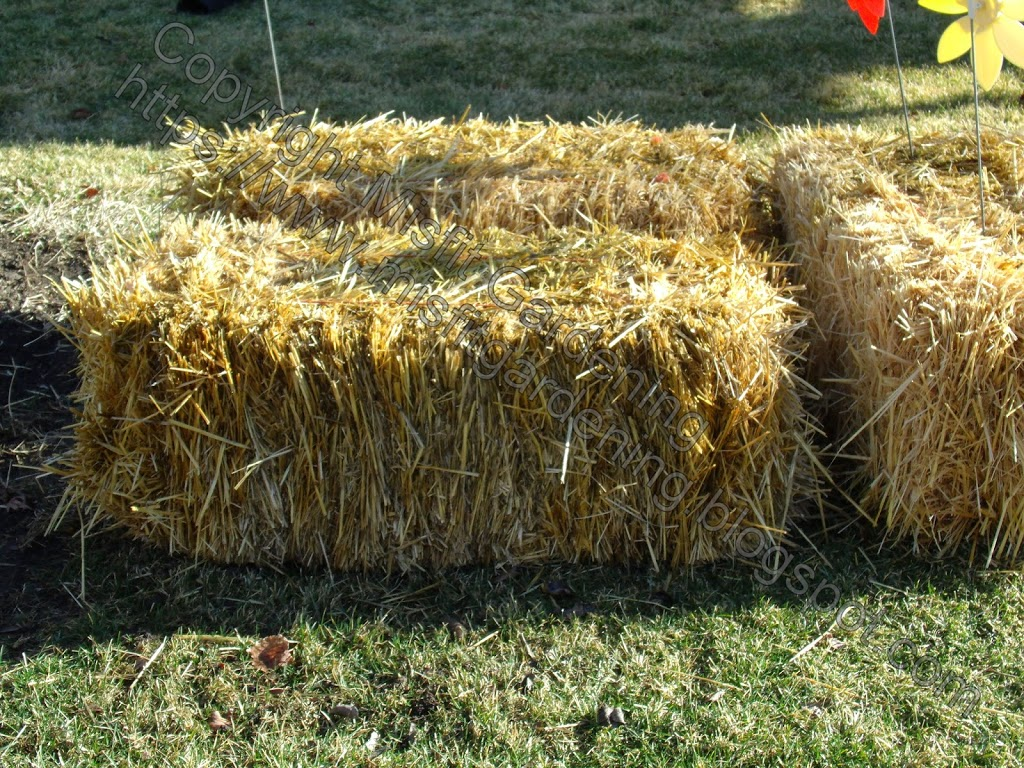 Hay Bale and Straw Bale Gardening