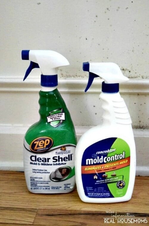 How To Remove Mold From Wood And Walls | Miss Information