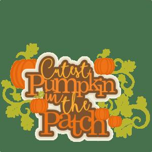 Design Love Fest Wallpaper Fall Cutest Pumpkin In The Patch Title Svg Scrapbook Cut File