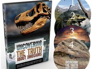 uncovering-the-truth-about-dinosaurs