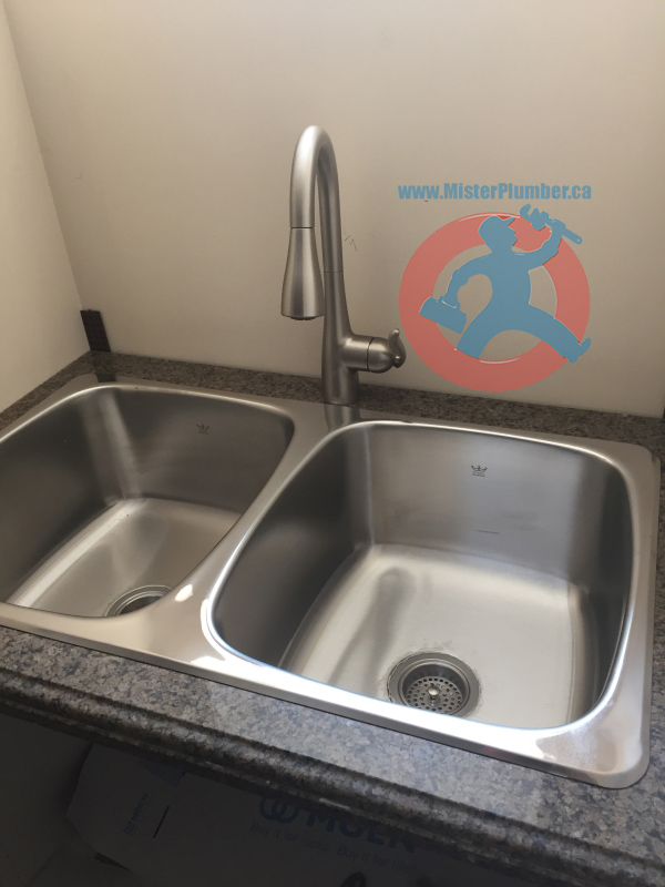 Double Stainless Steel Laundry Sink Mister Plumber