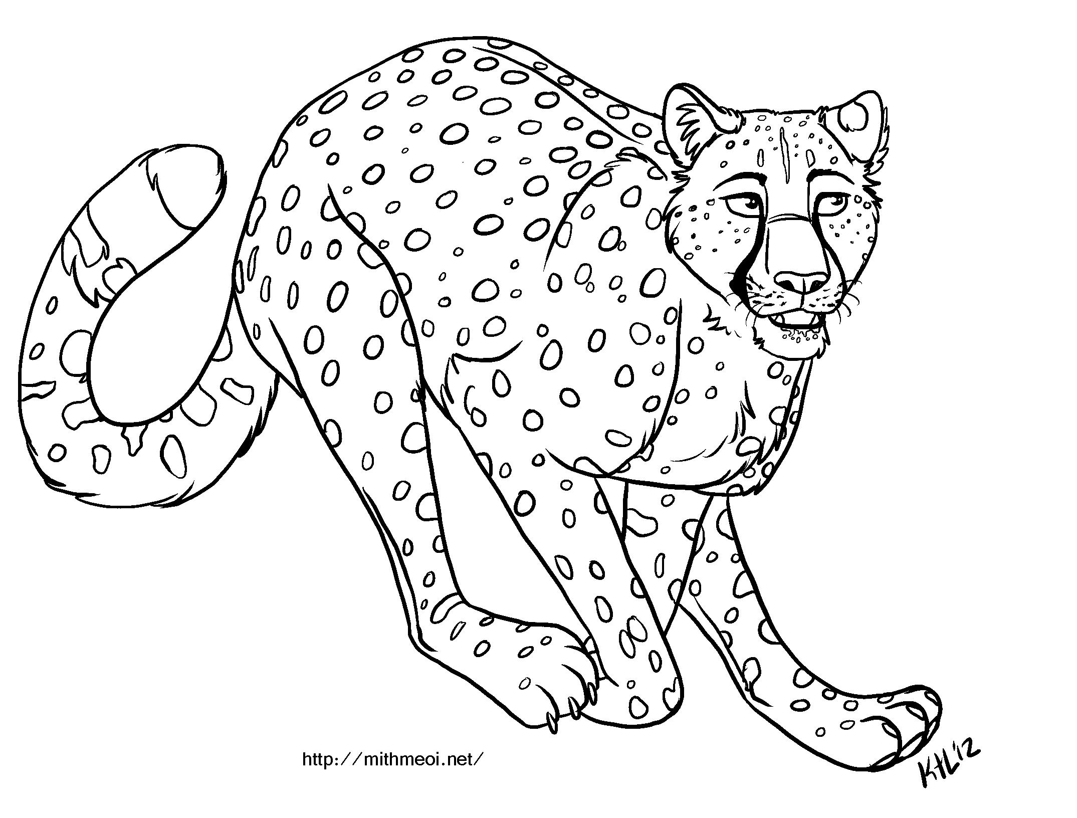 Cheetah Template - Costumepartyrun