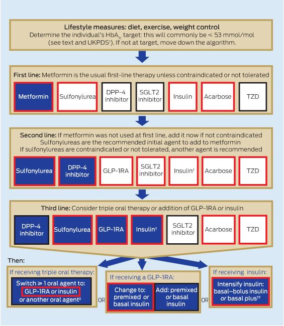 A new blood glucose management algorithm for type 2 diabetes a
