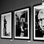 timothy_white_exhibit_