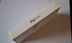 Apple iPad mini (2)
