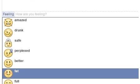 facebook feeling fat