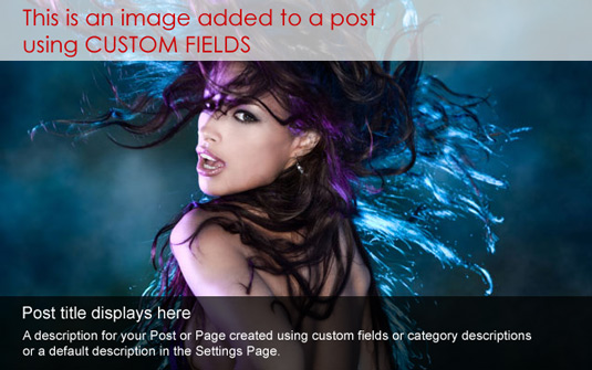 Dynamic Content Gallery wordpress plugin