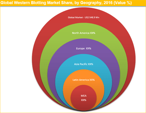 Western Blotting Market To Reach Worth US$ 872.5 Mn By 2025 - Credence Research