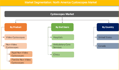 North America Cystoscopes Market