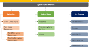 Cystoscopes Market