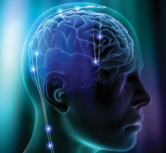 120207-brain