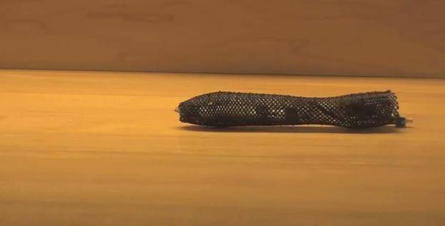 120810-meshworm
