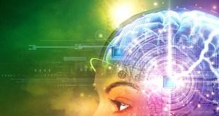 human_brain_hacked